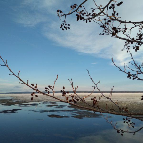 Весна на острове Кижи